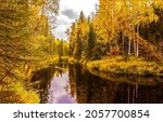 Small photo of A calm river in the autumn forest. Autumn forest river. Forest river in autumn season. Autumn forest river landscape