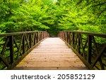 walking bridge over a stream ... | Shutterstock . vector #205852129
