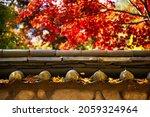 A Breathtaking Shot Of Fall...
