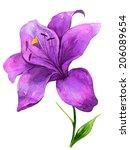 watercolor handmade colorful... | Shutterstock . vector #206089654