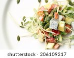 dish of salad with tomatoes ... | Shutterstock . vector #206109217