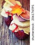 autumn fruit and berry jam on... | Shutterstock . vector #206176591