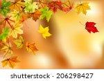maple autumn leaves falling... | Shutterstock .eps vector #206298427