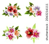 flowers set. collection of... | Shutterstock .eps vector #2063216111