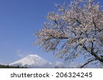 fuji and sakura | Shutterstock . vector #206324245