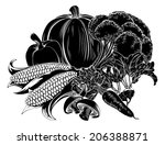 an illustration of a vegetables ... | Shutterstock .eps vector #206388871