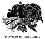 an illustration of a vegetables ...   Shutterstock .eps vector #206388871