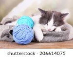 Stock photo cute little kitten sleeping on plaid on bright background 206614075