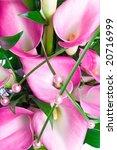 bouquet of three purple caliliy | Shutterstock . vector #20716999