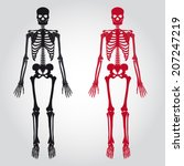 two scary red and black... | Shutterstock .eps vector #207247219
