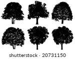 tree silhouette   Shutterstock . vector #20731150