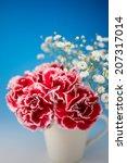 carnation  | Shutterstock . vector #207317014