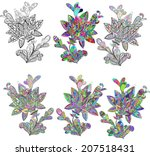 set floral stylized items in... | Shutterstock .eps vector #207518431