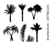Set Palm Traced. Vector