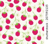 seamless pattern with raspberry.... | Shutterstock .eps vector #207592135