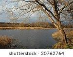late autumn. november | Shutterstock . vector #20762764