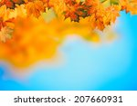 Abstract Autumnal Backgrounds...