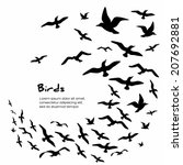 silhouettes of flying birds ... | Shutterstock .eps vector #207692881