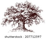 Isolated Old Tree With...