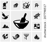spices vector icons set on gray.... | Shutterstock .eps vector #207798517