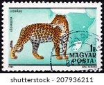 hungary   circa 1981  a stamp... | Shutterstock . vector #207936211