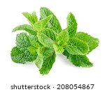 Mint Leaves Isolated On A White ...