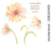 watercolor daisy vector flowers | Shutterstock .eps vector #208165405