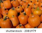 pumpkins | Shutterstock . vector #2081979