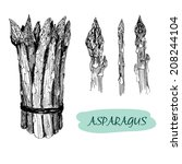 asparagus. set of hand drawn... | Shutterstock .eps vector #208244104