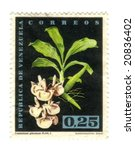 Old stamp from Venezuela - stock photo