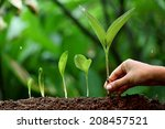 plant growth new life | Shutterstock . vector #208457521