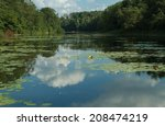 the lake with reflection ... | Shutterstock . vector #208474219