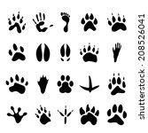 Collection Of Twenty Animal An...