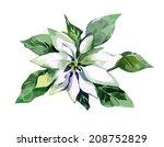 white poinsettia | Shutterstock .eps vector #208752829