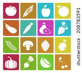 colorful fruit and vegetable... | Shutterstock .eps vector #208783591