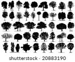 black tree silhouettes on white ... | Shutterstock .eps vector #20883190