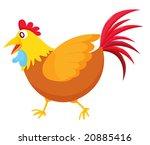 chicken illustration on a white ... | Shutterstock . vector #20885416
