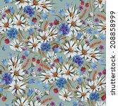 seamless pattern of summer... | Shutterstock . vector #208858999