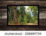 picture frame with national... | Shutterstock . vector #208889734