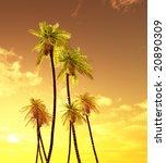 beautiful sunset   Shutterstock . vector #20890309