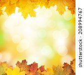 autumn background with maple... | Shutterstock . vector #208994767