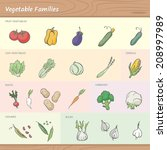 vegetable families | Shutterstock .eps vector #208997989