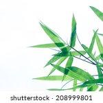 green bamboo leaves on white...   Shutterstock . vector #208999801
