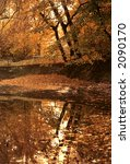 Mirror Of Autumn