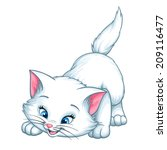 vector kitten playing cartoon... | Shutterstock .eps vector #209116477