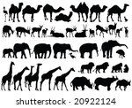 Stock vector african animals silhouettes vector 20922124