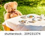 outdoor photo of teddy bear... | Shutterstock . vector #209231374