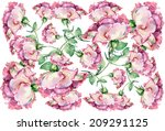 pink rose on a white background ... | Shutterstock . vector #209291125