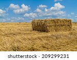 straw bales after wheat cleaning | Shutterstock . vector #209299231