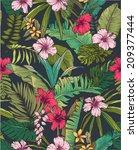 seamless sketch tropical flower ... | Shutterstock .eps vector #209377444